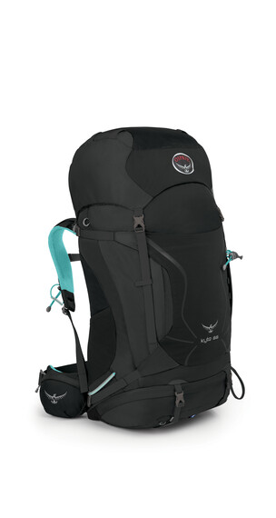 Osprey Kyte 66 Backpack Women Grey Orchid